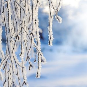 Loss and a Snowflake: A Ritual for Healing