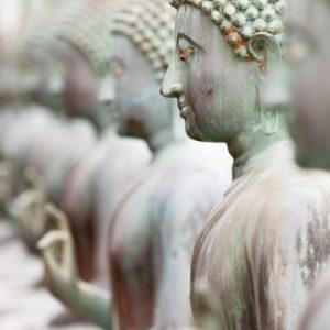 Withdrawing the Senses and Feeling Feelings
