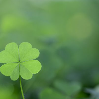 What does spirtuality have to do with luck? Represented here with a lucky four leaf clover.