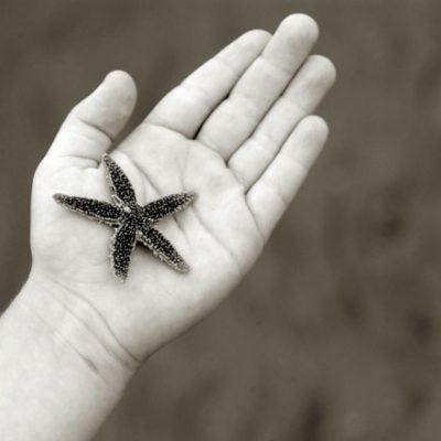 <em>Edit Blog entry</em> Why Making Small Steps Matter
