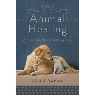 Animal Healing book cover