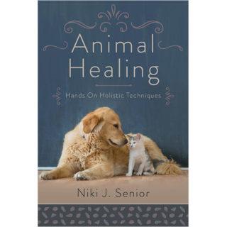 Animal Healing book cover
