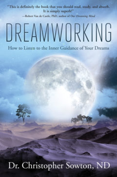 Cover image of Dreamworking