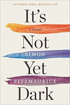 Cover image of It's Not Yet Dark