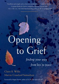 Opening to Grief by Claire B. Willis