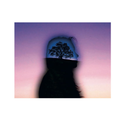 Profile silhouette with tree
