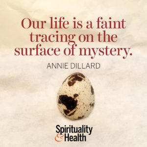 Our life is a faint tracing on the surface of mystery.
