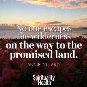 <p>No one escapes the wilderness on the way to the promised land. - Annie Dillard</p>