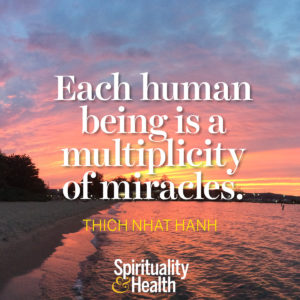 <p>Each human being is a multiplicity of miracles. - Thich Nhat Hanh</p>