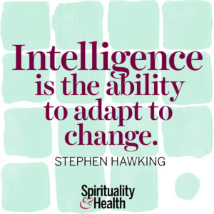 <p>Intelligence is the ability to adapt to change. - Stephen Hawking</p>