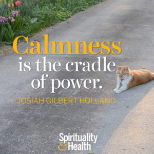 Calmness is the cradle of power