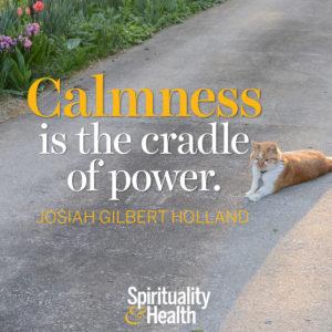 Calmness is the cradle of power