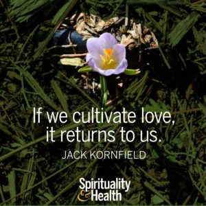 If we cultivate love it returns to us