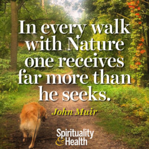 <p>In every walk with Nature one receives far more than he seeks. - John Muir</p>