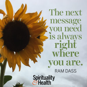 <p>The next message you need is always right where you are. - Ram Dass</p>