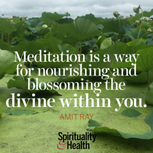 Meditation is a way for nourishing and blossoming the divine within you