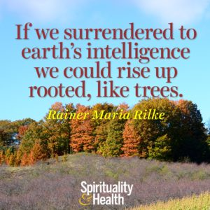 If we surrendered to earths intelligence we could rise up rooted like trees