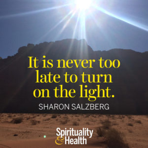 <p>It is never too late to turn on the light. - Sharon Salzberg</p>