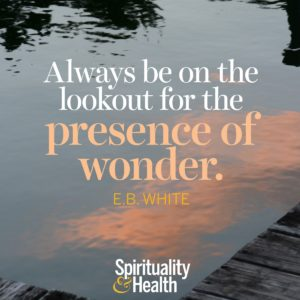 Always be on the lookout for the presence of wonder