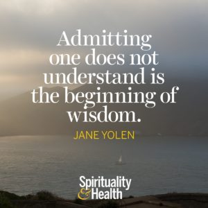 Admitting one does not understand is the beginning of wisdom