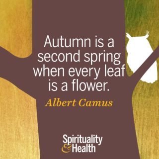 Albert Camus on fall's beauty - Autumn is a second spring when every leaf is a flower