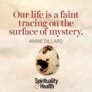 Annie Dillard on our place in the universe - Our life is a faint tracing on the surface of mystery.