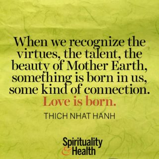 Thich Nhat Hanh on beauty in our natural world - When we recognize the virtues the talent the beauty of Mother Earth something is born in us some kind of connection Love is born