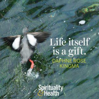 Daphne Rose Kingma on Life and Gratitude - Life itself is a gift