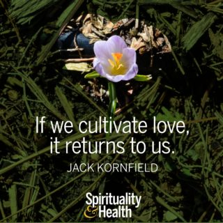 Jack Kornfield on giving and receiving love - If we cultivate love it returns to us