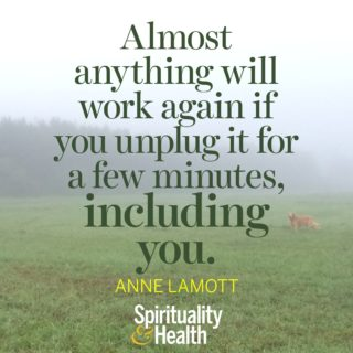Anne Lamott on taking a time out - Almost anything will work again if you unplug it for a few minutes, including you.