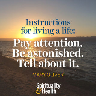 Mary Oliver on living the best life - Instructions for living a life: Pay attention. Be astonished. Tell about it. - Mary Oliver