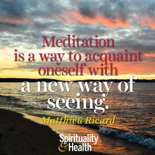 Matthieu Ricard on meditation - Meditation is a way to acquaint oneself with a new way of seeing