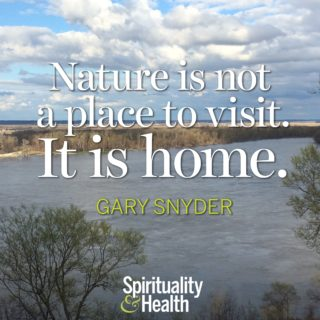 Gary Snyder on nature - Nature is not a place to visit It is home