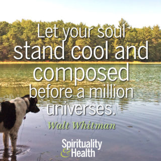 Walt Whitman on the power and peace within - Let your soul stand cool and composed before a million universes