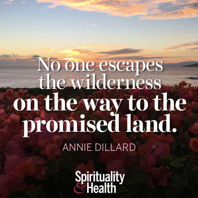 Annie Dillard on the Wilderness