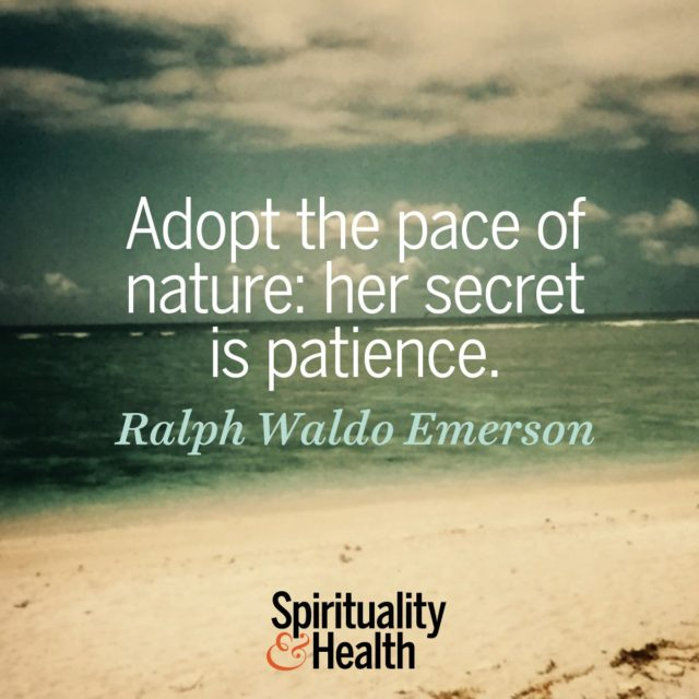 Ralph Waldo Emerson on the pace of nature