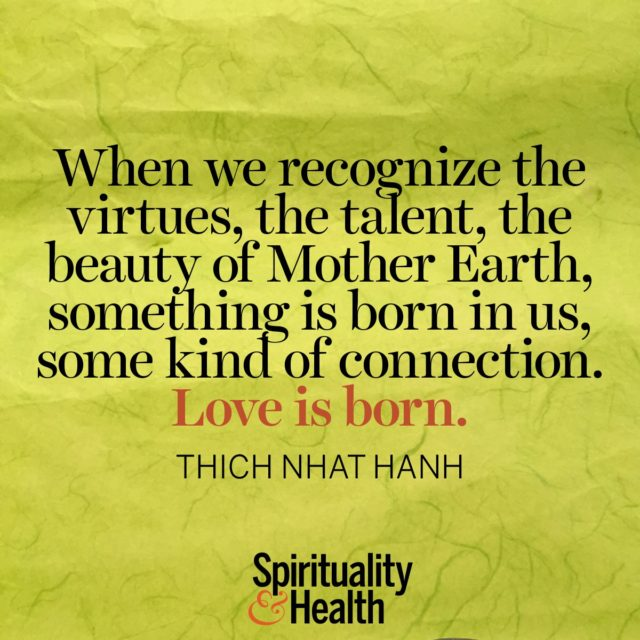 Thich Nhat Hanh on beauty in our natural world