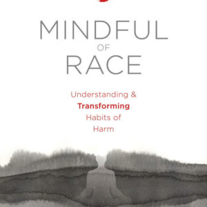 Mindful of Race book cover