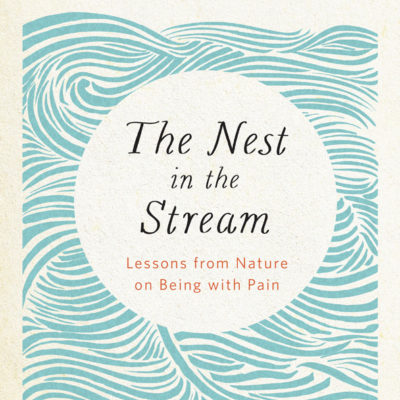 The Nest in the Stream cover art