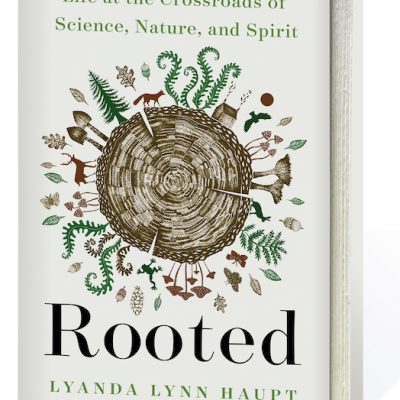 Rooted: Life at the Crossroads of Science, Nature, and Spirit By Lyanda Lynn Haupt