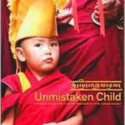 unmistaken child the reincarnation of soul