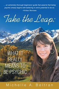 Take the Leap - book cover