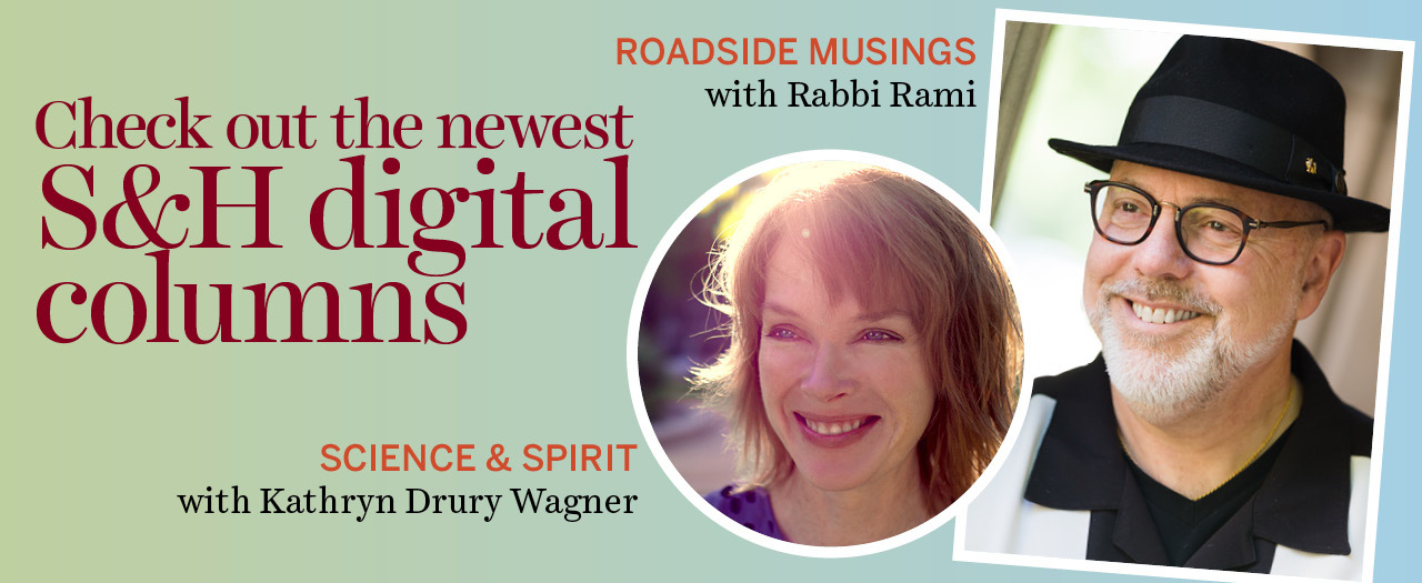 Check out our newest digital columns