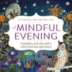 cover image of Mindful Evening