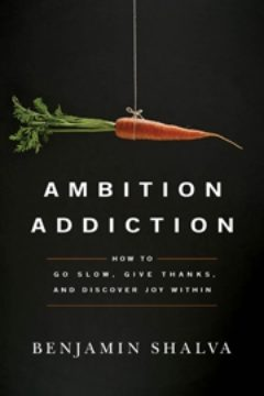 Cover image of Ambition Addiction