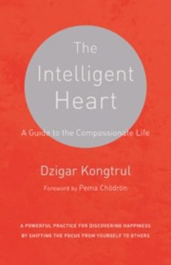 Cover image of The Intelligent Heart
