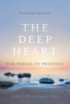 The Deep Heart book cover