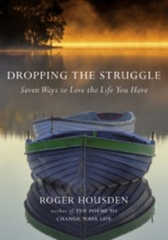 Cover image of Dropping The Struggle