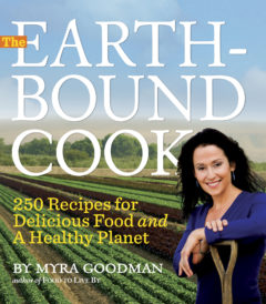 Earthbound Cook by Myra Goodman