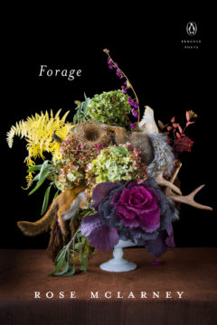 Forage by Rose McLarney